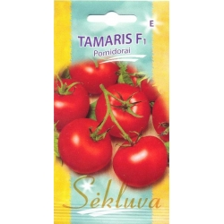 Tomato 'Tamaris' H, 10 seeds