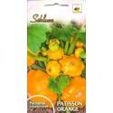 Zucchine patisson 'Orange' 1 g