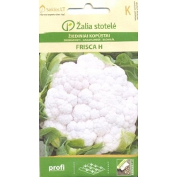 Cauliflower 'Frisca' H, 15 seeds