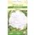 Blumenkohl 'Frisca' H, 15 Samen
