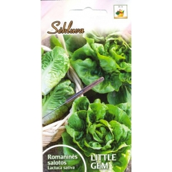Romaine lettuce 'Little Gem' 1 g