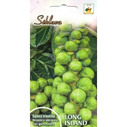 Brussels sprout 'Long Island' 1 g