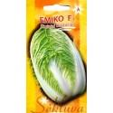 Chinakohl 'Yamiko' H, 30 Samen