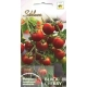 Tomato 'Black Cherry' 0,1 g