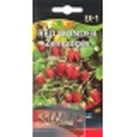Wald-Erdbeere 'Red Wonder' 0,2 g