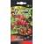 Strawberry 'Red Wonder' 0,2 g
