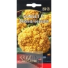 Cauliflower 'Sunset' H, 15 seeds