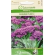 Brokoliai 'Summer Purple' 0,5 g