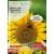 Sonnenblume 10 g