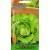 Lettuce 'Panter' 1 g