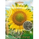 Sonnenblume 20 g