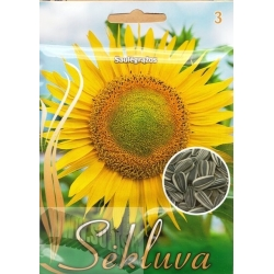 Sunflower 20 g