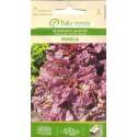 Laitue cultivée 'Rosella' 1 g