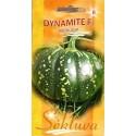 Тыква мускатная 'Dynamite' H, 6 семян