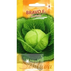 White cabbage 'Bravo' H, 40 seeds