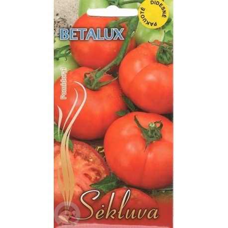 Tomate 'Betalux' 5 g