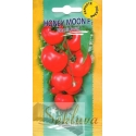 Tomate 'Honey Moon' H, 50 Samen