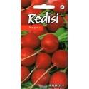 Radieschen 'Rudolf' 3 g