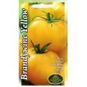 Tomāti 'Brandywine Yellow' 0,1 g