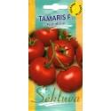 Pomodoro 'Tamaris' H, 100 semi