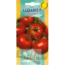 Tomato 'Tamaris' H, 100 seeds