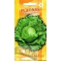 Gartensalat 'Platinas' 20 Samen