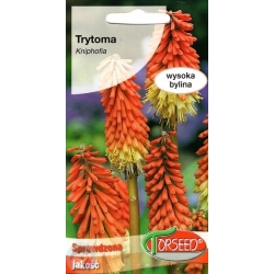 Red hot pokers 0,5 g