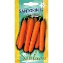 Морковь посевная 'Santorin' H, 700 семян