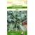 Салатная листовая капуста 'Fizz' 0,2 г