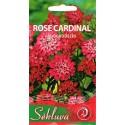 Rudgrūdėlė gibraltarinė 'Rose Cardinal' 0,5 g