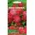 Gibraltar candytuft 'Rose Cardinal' 0,5 g