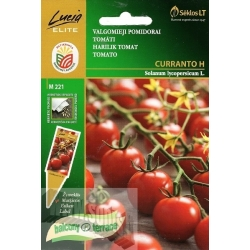 Tomate 'Curranto' H, 0,1 g