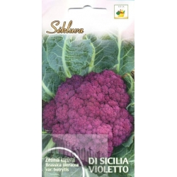 Cauliflower 'Di Sicilia Violetto' 1 g