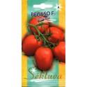 Pomidorai valgomieji 'Pegaso' H, 15 sėklų