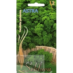 Garden Parsley 'Astra' 2 g