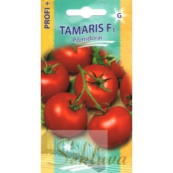 Tomato 'Tamaris' H, 20 seeds