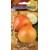Onion 'Rijnsburger 5' 2 g
