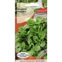 Salātu baldriņš 'Verte de Cambrai' 2 g