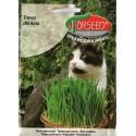 Žolė katėms 30 g