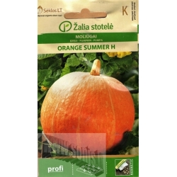 Squash 'Orange Summer' H, 5 seeds