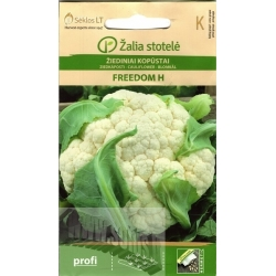 Cauliflower 'Freedom' H, 15 seeds