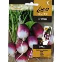 Garten-Rettich 'Diana' 5 g