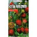 Wald-Erdbeere 'Erna' 0,05 g