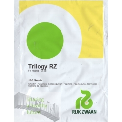 Cetriolo 'Trilogy RZ' H, 100 semi