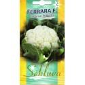 Цветная капуста 'Ferrara' H, 25 семян