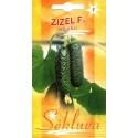 Einlegegurke 'Zizel' H, 20 Samen