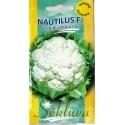 Blumenkohl 'Nautilus' H, 500 Samen