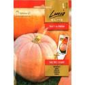 Pumpkin 'Pacific Giant' 3 g