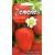 Garden strawberry 'Temptation' 10 seeds