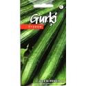 Cetriolo 'Green River' H, 10 semi